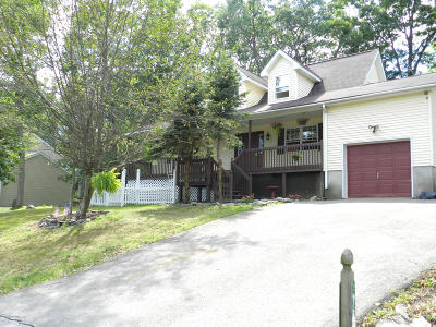 Bushkill Single Family Home For Sale: 161 Kensington Dr