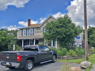 Tobyhanna Commercial For Sale: 593 Main St