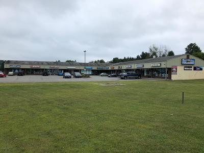 Brodheadsville Commercial For Sale: 110 Shafer Dr