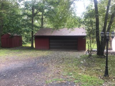 East Stroudsburg Single Family Home For Sale: 668 Cherry Ln