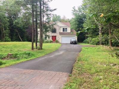 Tobyhanna Single Family Home For Sale: 166 Fairway Dr