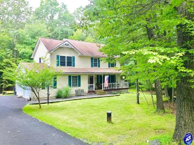 Stroudsburg Single Family Home For Sale: 352 Lakefield Terrace