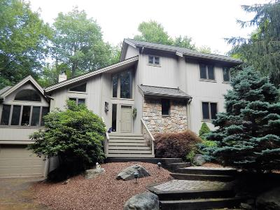 Pocono Pines Single Family Home For Sale: 1312 Musket Path
