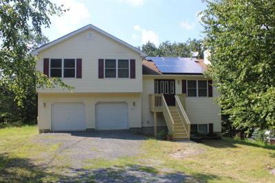 Bushkill Single Family Home For Sale: 127 Dover Dr