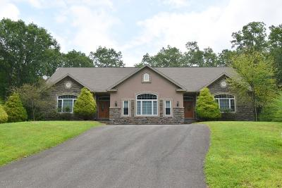 East Stroudsburg Single Family Home For Sale: 120 Lady Bug Lane