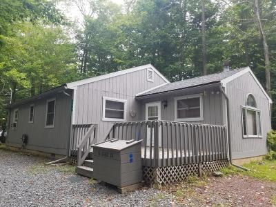Pocono Lake Single Family Home For Sale: 180 Minisink Dr