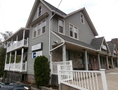 Mount Pocono Commercial For Sale: 1434 Pocono Blvd