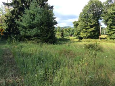 Residential Lots & Land For Sale: 45070 Golf Drive