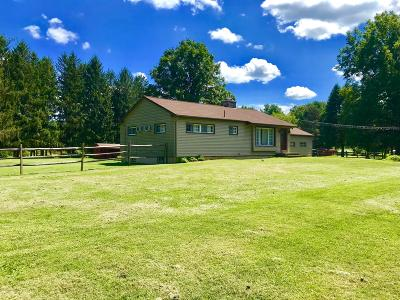 Single Family Home For Sale: 516 Burger Hollow Road