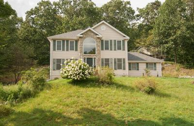 Bushkill Single Family Home For Sale: 204 Kirkham