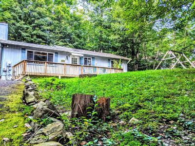 Tobyhanna PA Single Family Home For Sale: $92,000