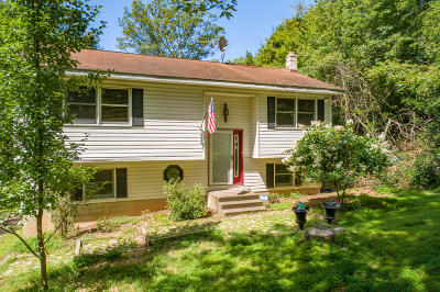 Stroudsburg Single Family Home For Sale: 167 McMichaels Ct