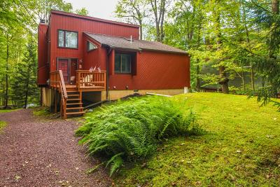 Pocono Lake Single Family Home For Sale: 270 Trout Creek Dr