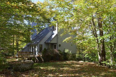 Pocono Lake Single Family Home For Sale: 114 Lenape Dr