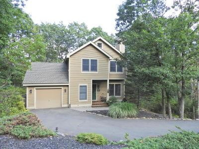 Tannersville Single Family Home For Sale: 110 Upper Deer Vly