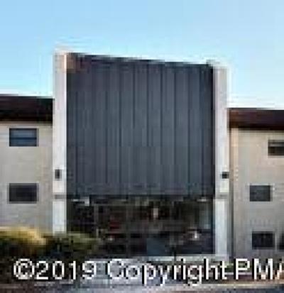 Mount Pocono Single Family Home For Sale: 130 Foxfire Dr #206