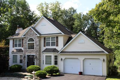 East Stroudsburg Single Family Home For Sale: 331 Rolling Hills Dr
