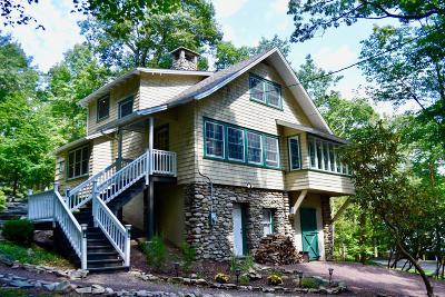 Monroe County Single Family Home For Sale: 697 Lenape Lane