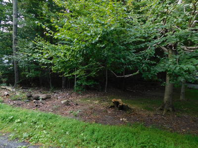 Monroe County Residential Lots & Land For Sale: 1011 Cambell Way