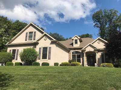 Lehigh County, Northampton County Single Family Home For Sale: 501 Janine Way