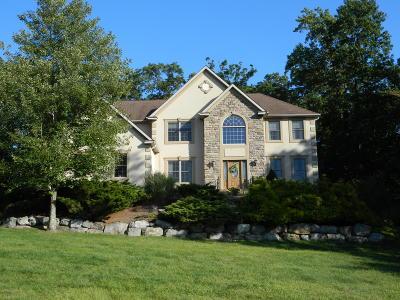 Lehigh County, Northampton County Single Family Home For Sale: 27 Alexandra Cir