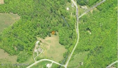 Stroudsburg Residential Lots & Land For Sale: 1B Neola Rd