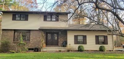 Stroudsburg Single Family Home For Sale: 158 Scott Dr
