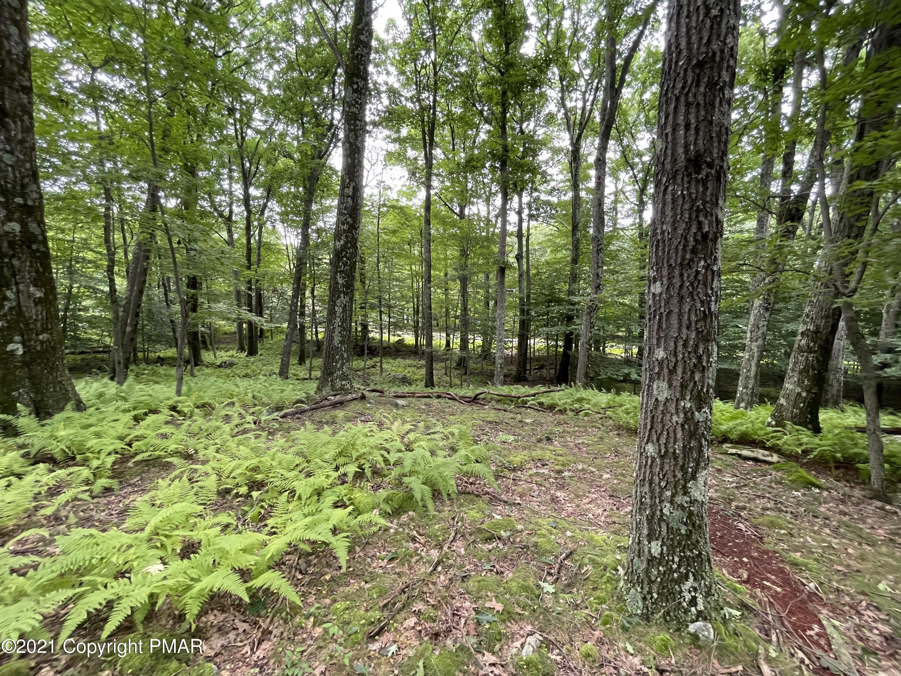 Lot 63 Skyline Dr, Canadensis, PA 18325