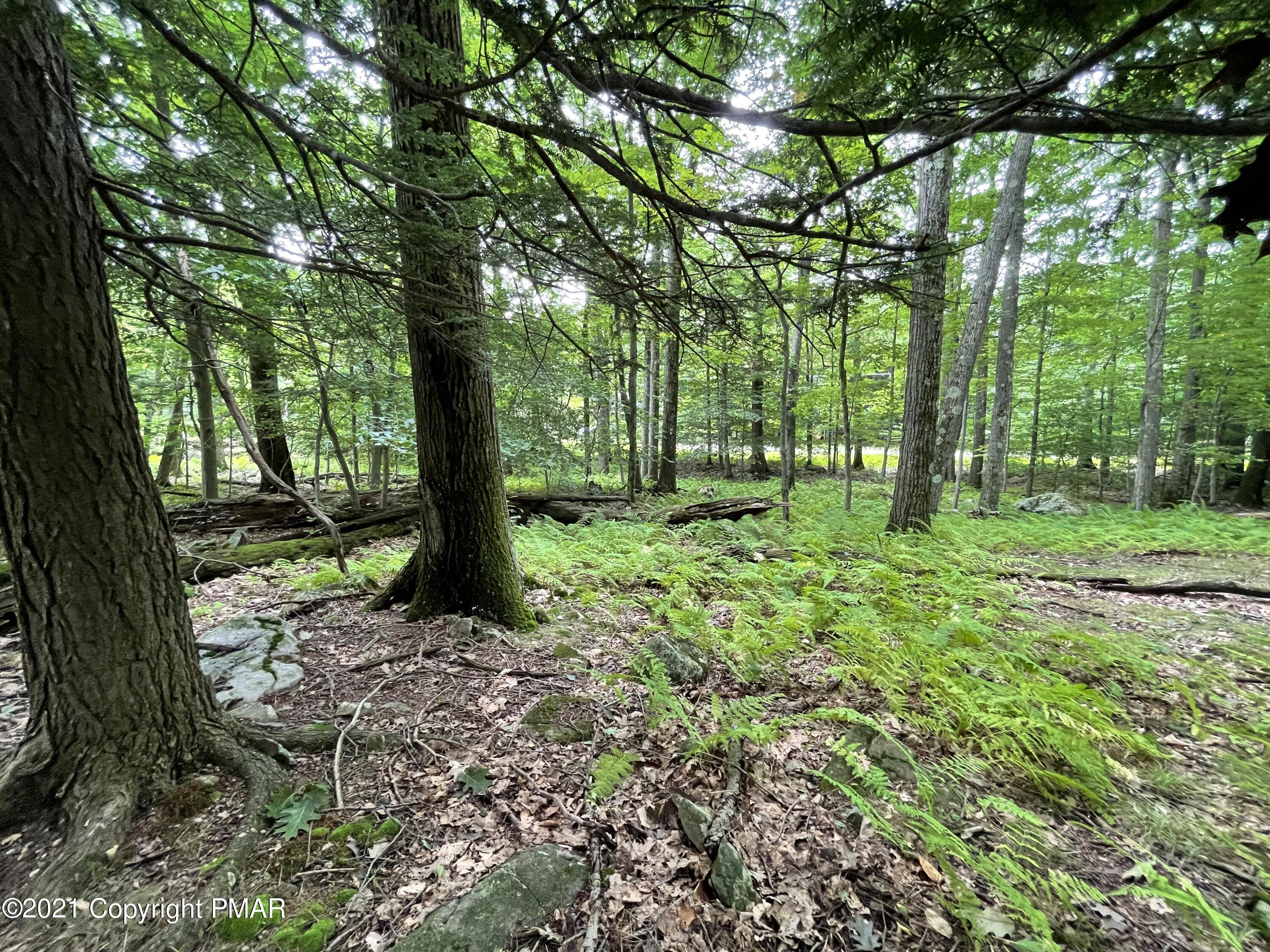 Lot 64 Skyline Dr, Canadensis, PA 18325