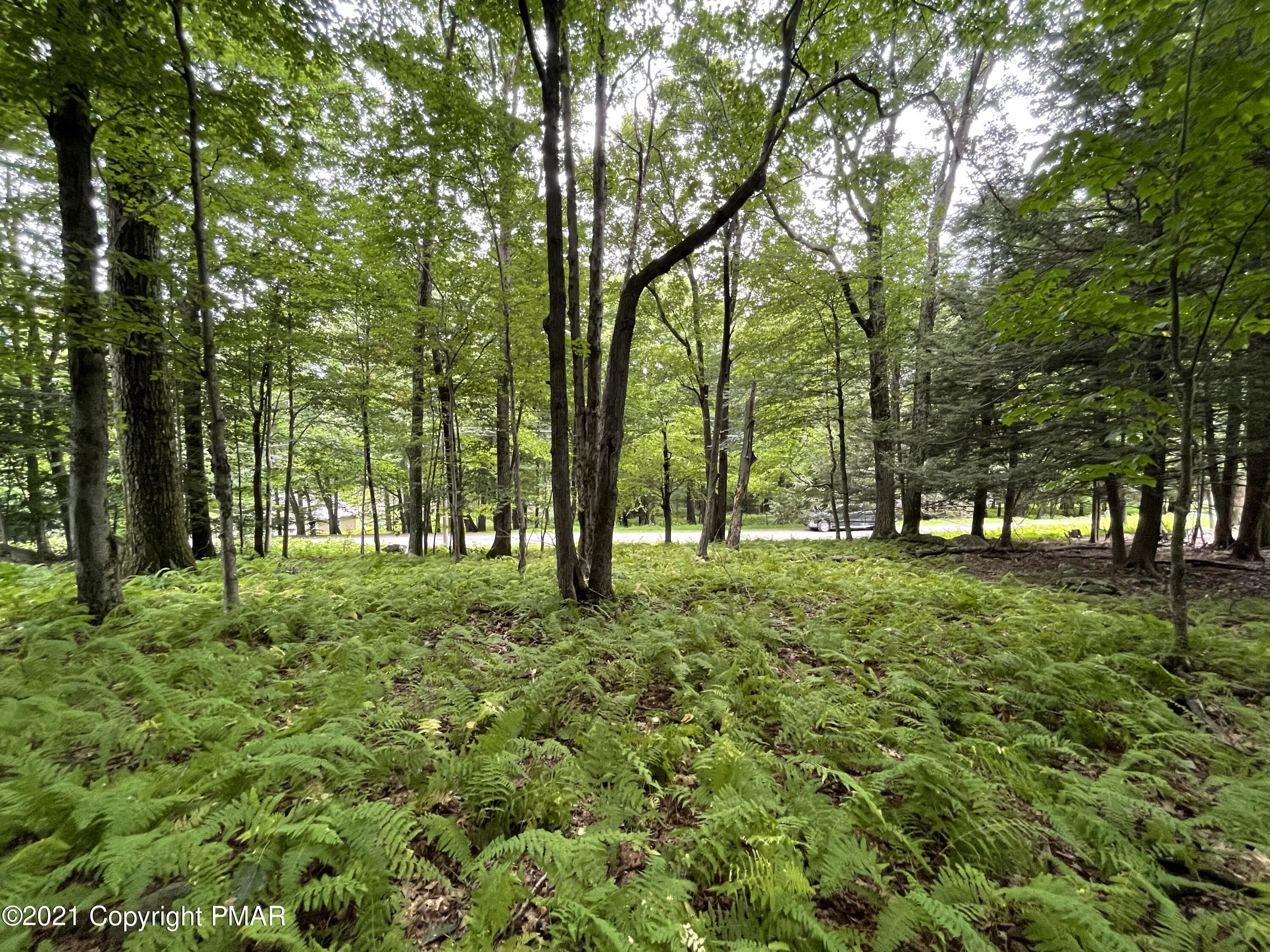 Lot 66 Skyline Dr, Canadensis, PA 18325