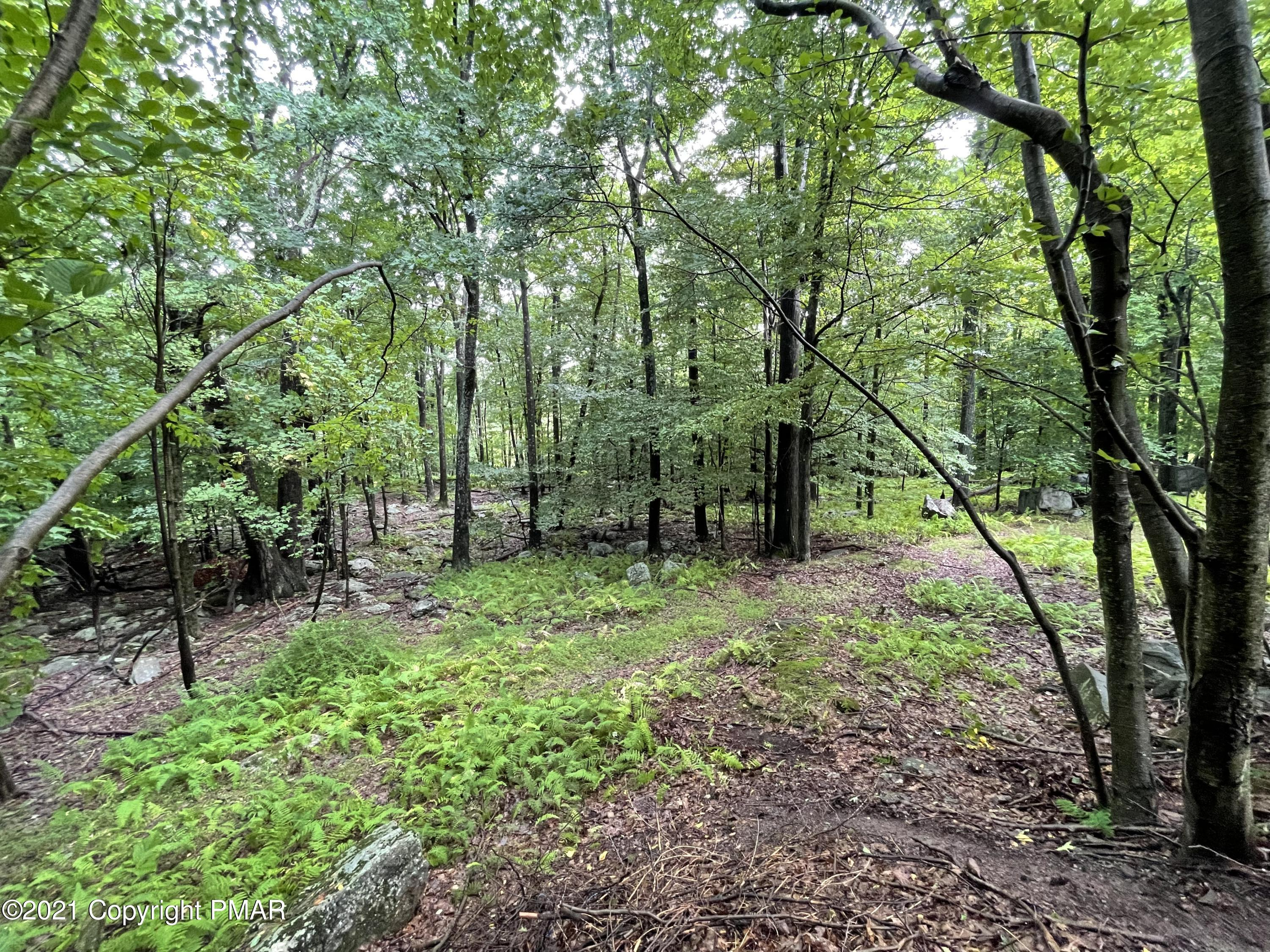 Lot G-120 Bass Ct, Canadensis, PA 18325
