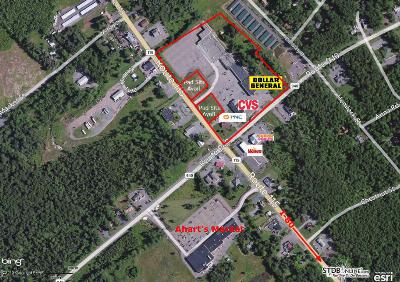 Blakeslee Commercial For Sale: 940 Pa 115/Sr