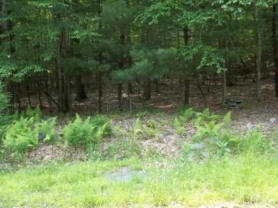 Dingmans Ferry Residential Lots & Land For Sale: Park Rd