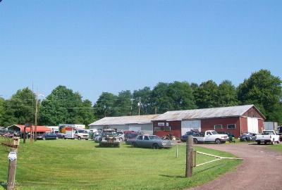 Pleasant Mount Commercial For Sale: 1081 Great Bend Tpke