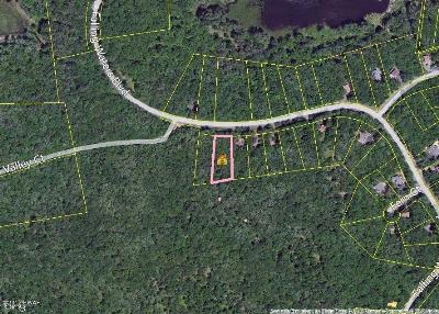 Masthope Residential Lots & Land For Sale: 137 Falling Waters Blvd