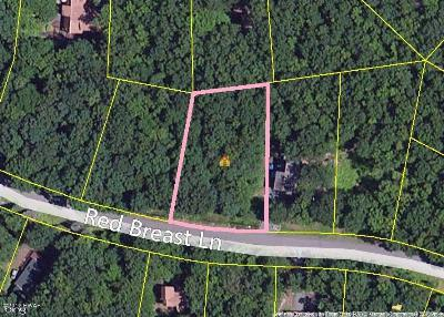 Masthope Residential Lots & Land For Sale: 110 Red Breast Ln