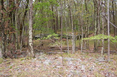 Hemlock Farms Residential Lots & Land For Sale: 128 Boulder Drive
