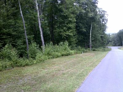 Blue Heron Woods Residential Lots & Land For Sale: 137 Wedgewood Dr