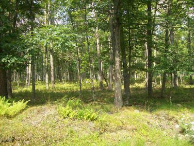 Conashaugh Lakes Residential Lots & Land For Sale: LOT 5717 Oneida Way