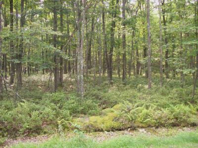 Conashaugh Lakes Residential Lots & Land For Sale: LOT 5704 Overbrook Run