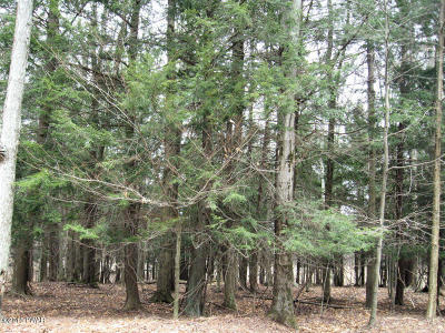 Residential Lots & Land For Sale: Lot 812 Pine Creek Rd