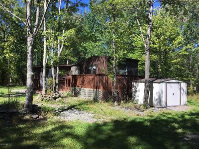Honesdale Single Family Home For Sale: 771 Bethany Tpke