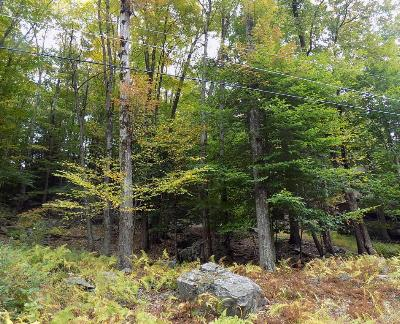 Residential Lots & Land For Sale: 63 Beaver Lake Dr