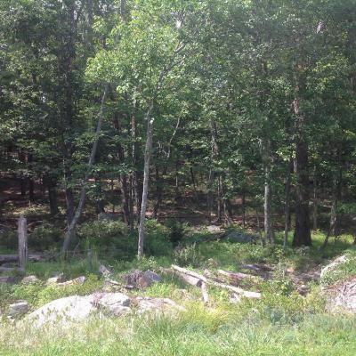 hemlock farms Residential Lots & Land For Sale: 114 Boulder Dr