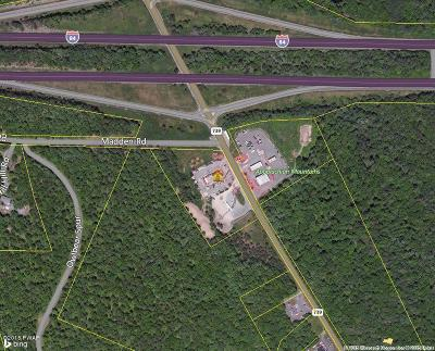 Lords Valley PA Residential Lots & Land For Sale: $795,000