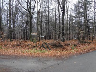Newfoundland PA Residential Lots & Land For Sale: $28,000