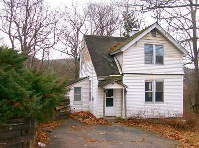 Hawley Single Family Home For Sale: 18 Elizabeth St