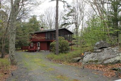 Hemlock Farms Single Family Home For Sale: 804 S Granite Ct