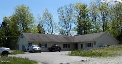 Lake Ariel Single Family Home For Sale: 513 Easton Tpke