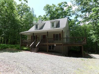 Lackawaxen Single Family Home For Sale: 248 Powderhorn Dr